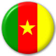 Cameroon Country Flag 25mm Pin Button Badge